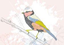 Hand dragen fågel Arkivbilder