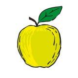 Hand dragen frukter isolerad vektor - grönt äpple Royaltyfri Bild