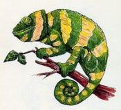 Hand dragen grön kameleont med gula band Royaltyfria Bilder