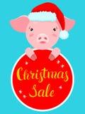 Hand dragen illustration av det gulliga rosa svinet i hatt för jultomten` s och röd etikett Royaltyfri Bild