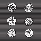 Hand dragen illustration för symbol för hjärnuppsättningvektor Arkivfoton