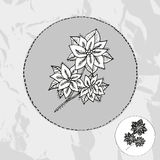 Hand dragen julstjärna Royaltyfri Bild