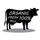 Hand dragen ko för lantgårddjur Organiska nya mjölkar bokstäver också vektor för coreldrawillustration Arkivbilder