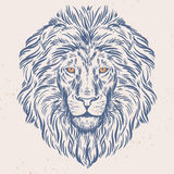 Hand dragen lejonhuvudillustration Royaltyfri Fotografi
