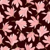 Hand dragen magnoliamodell Arkivfoton