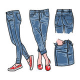 Hand dragen modesamling av jeans för flicka` s Kvinnajeansvecto Fotografering för Bildbyråer
