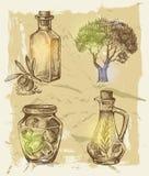 Hand dragen oliv Arkivbild