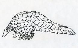 Hand dragen pangolinkontur royaltyfri illustrationer