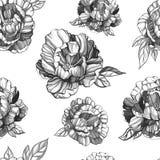 Hand dragen peoniy modell för sömlöst färgpulver Grafiska illustrationer för designprojekt stock illustrationer