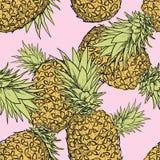 Hand dragen sömlös modell mapp för illustration med för det ananas—materielet Fotografering för Bildbyråer