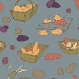 Hand dragen sömlös textur med potatisar Vektor Illustrationer