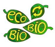 Hand dragen uppsättning av Eco etiketter Ekologiinskrifter på bladet Royaltyfri Bild