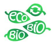 Hand dragen uppsättning av Eco etiketter Ekologiinskrifter på bladet Arkivbilder