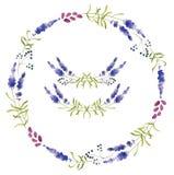 Hand dragen uppsättning av lavendelblommor, kransar och garneringbeståndsdelar Arkivfoton