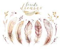 Hand dragen uppsättning för fjäder för vattenfärgmålningar vibrerande Boho stilvingar illustration isolerad ont-vit Fågelflugades vektor illustrationer