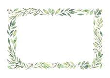 Hand dragen vattenfärgillustration Botanisk rektangulär gräns stock illustrationer