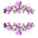 Hand dragen vektorram Blom- krans med sidor söt ärta D stock illustrationer