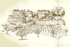 Hand dragen vingård Arkivbild