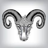 Hand dragit huvud av Aries Illustration Royaltyfria Bilder