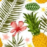 Hand dragit tropiskt sömlöst royaltyfri illustrationer