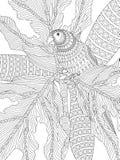 Hand dragit vuxet färga för papegoja Arkivbilder