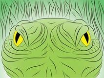 Hand draw alligator eye. Big eye crocodile Stock Photo