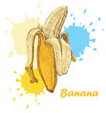 Hand draw banana Royalty Free Stock Images