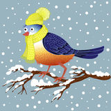 Hand draw bullfinch bird sitting on a snow-covered branch Stock Image