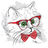 Hand draw cat in the glass and mustache. Vector illustration Royalty Free Stock Image