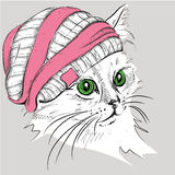 Hand draw cat in a hat. Vector illustration Stock Photography
