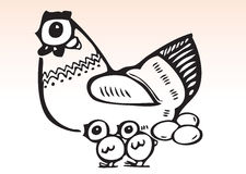 Hand draw chicken family. Hand drawn illustration of a hen and 2 little chicks vector illustration