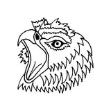 Hand draw eagle's head in the style of the sketch Royalty Free Stock Images
