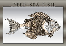 Hand-draw of  fantastic fishes Royalty Free Stock Photos