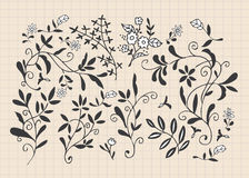 Hand draw flower Stock Image