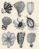 Hand draw flower Stock Photos