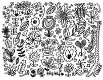 Hand draw flower element Royalty Free Stock Image