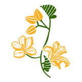 Hand draw flower. Line on White background Stock Photography