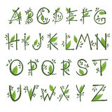 hand draw  font in the form of branches and le Royalty Free Stock Photo