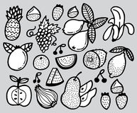 Hand draw fruit Royalty Free Stock Image