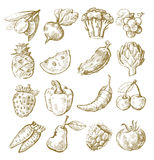 Hand draw fruit and vegetable Royalty Free Stock Photo