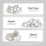 Hand draw fruits banner Stock Photos