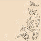 Hand draw grunge butterfly. Abstract vector Stock Photo