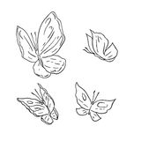 Hand draw grunge vector butterfly on white Royalty Free Stock Image