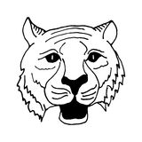 Hand draw head  tiger in black and white style Royalty Free Stock Images
