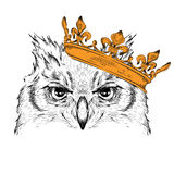 Hand draw Image Portrait owl  in the crown. African / indian / totem / tattoo design. Use for print, posters, t-shirts. Hand draw Stock Photos