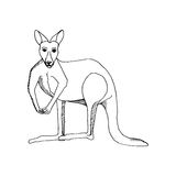 Hand draw a kangaroo-style sketch on a black and Stock Photography