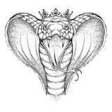 Hand draw King Cobra in the crown. Vector illustration Stock Image