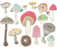 Hand Draw Mushroom Elements royalty free illustration
