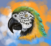 Hand draw parrot Royalty Free Stock Photography