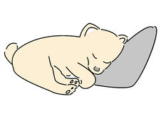 Hand draw pomeranian dog sleep at the pillow with white background Royalty Free Stock Images